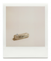 http://robinwaart.nl/files/gimgs/th-85_85_046-izone-110329-2240-hrs-wamberal-central-coast-nsw-au-1999-polaroid-i-zone-instant-pocket-camera-transparent-and-blue-1999-2265-aud.png