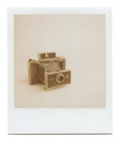 http://robinwaart.nl/files/gimgs/th-85_85_098-automatic-110703-1130-hrs-amsterdam-nl-1971-1977-polaroid-automatic-land-camera-430-1971-1977-2000-eur.png