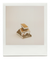 http://robinwaart.nl/files/gimgs/th-85_85_112-sx-110719-1554-hrs-norderstedt-de-1977-1986-polaroid-sx-70-land-camera-alpha-1-silver-brown-leather-1977-1986-6838-eur.png
