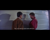 http://robinwaart.nl/files/gimgs/th-92_92_rebel-without-a-cause-nicholas-ray-us-1955-005355-hey-you-want-to-come-home-with-me-sal-mineo-s-and-james-dean-a-copy.jpg